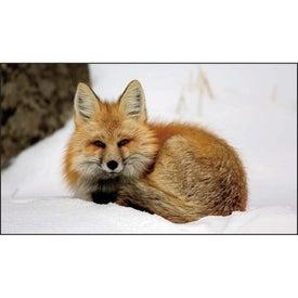 Company North American Wildlife Executive Calendar