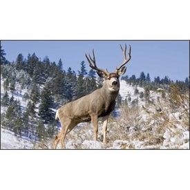 North American Wildlife Executive Calendar for Your Church