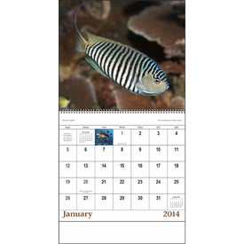 Advertising Ocean Glory Spiral Calendar