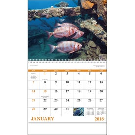 Ocean Glory Spiral Calendar for Advertising