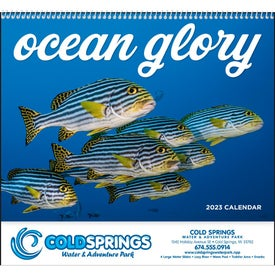Ocean Glory Spiral Calendar (2017)