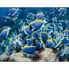 Ocean Glory Stapled Calendar for Marketing