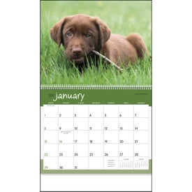 Company Puppies 12 Month Appointment Calendar