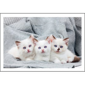 Puppies and Kittens Pocket Calendar for your School