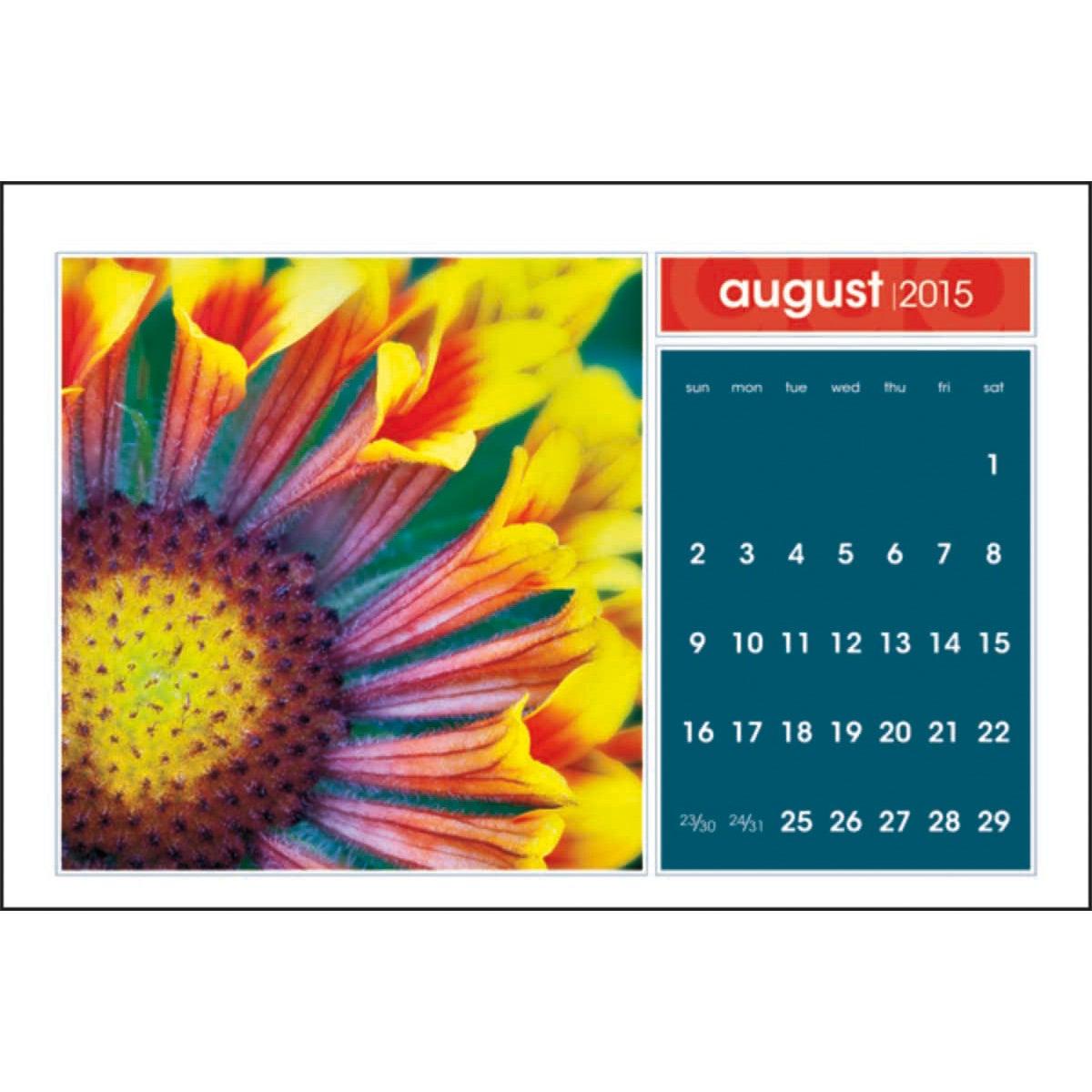 Simplicity Large Desk Calendar (2016) | Custom Calendars | 2.11 Ea.