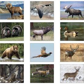 Promotional Wildlife Portraits Window Calendar