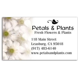 Company Business Card Magnet
