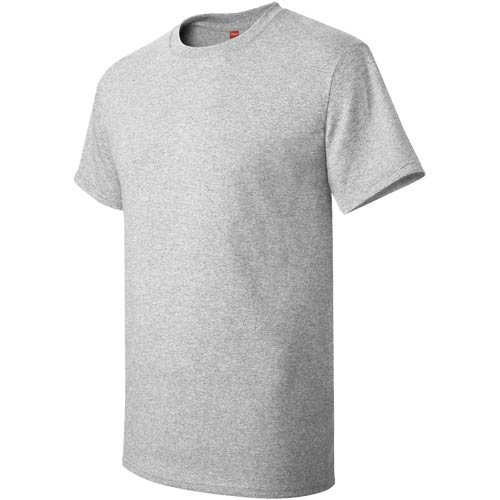 Ash Light Hanes Authentic Tagless T-Shirt