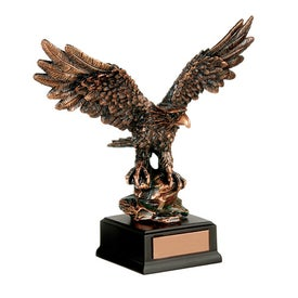 Branded Determination Award