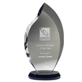 Innovation Award (Large)