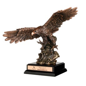 Soaring Heights Award