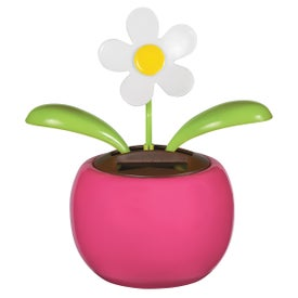 Solar Powered Dancing Flower for your School