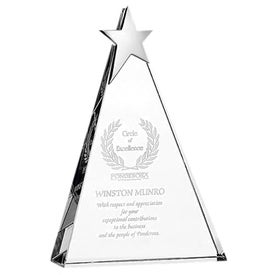 Zenith Award (Large)