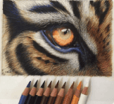 What's Inside Colored Pencils?