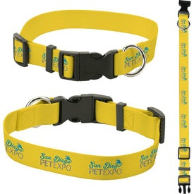 "Pet Collars (1"" x 20"", Quick Ship)"