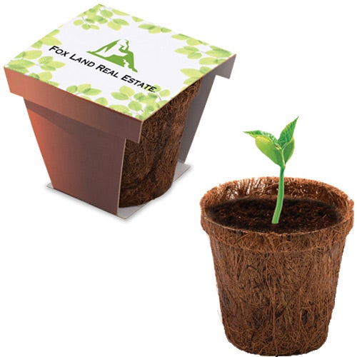 Brown Coco Starter Planter Kit