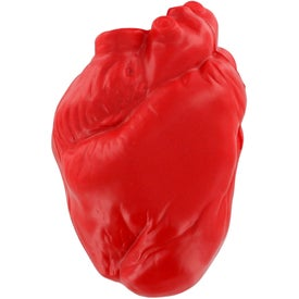 Anatomical Heart Stress Ball