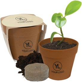 Mini Bamboo Blossom Kit with Your Logo