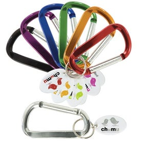 Carabiner with Keytags