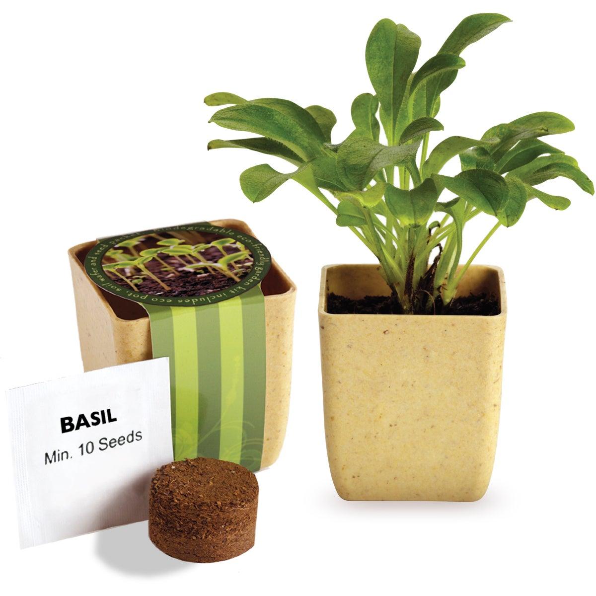 flower pot set with basil seeds trade show giveaways 1. Black Bedroom Furniture Sets. Home Design Ideas