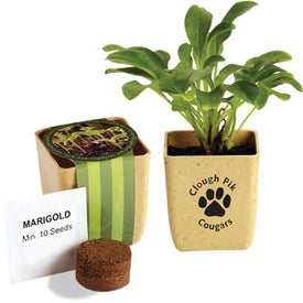 Flower Pot Set with Marigold Seeds for Your Company