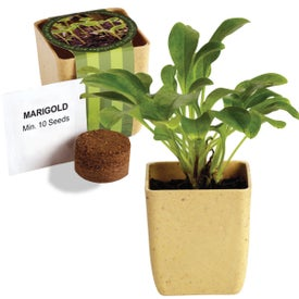 Printed Flower Pot Set with Marigold Seeds