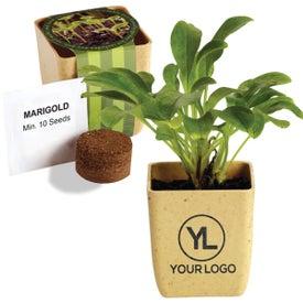Flower Pot Set with Marigold Seeds