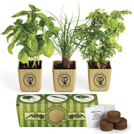 GrowPot Eco-Planter Herb 3 Pack for Your Company