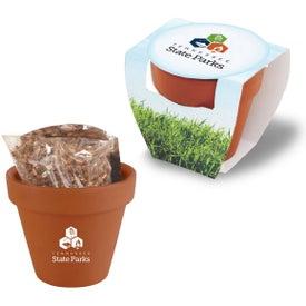 Seed Sensations Terra Cotta Pot
